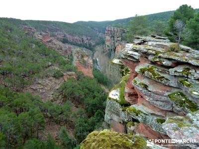 Hoces y cañones del Río Gallo --Rutas Senderismo;senderos locales